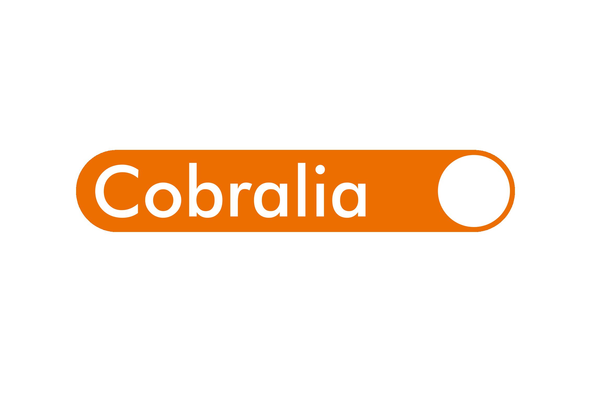 COBRALIA, Servicios Integrales de Recuperación SL